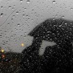 傘さし・片手・無灯火など自転車関与事故と判例